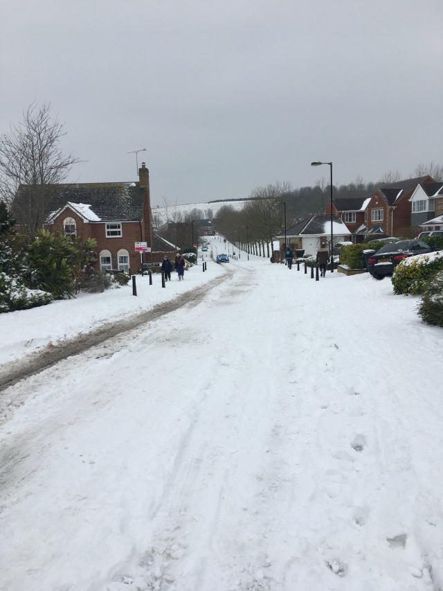 Snow in Salisbury