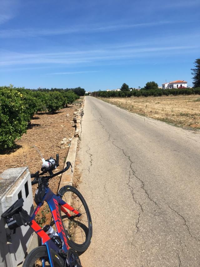 Denia bike